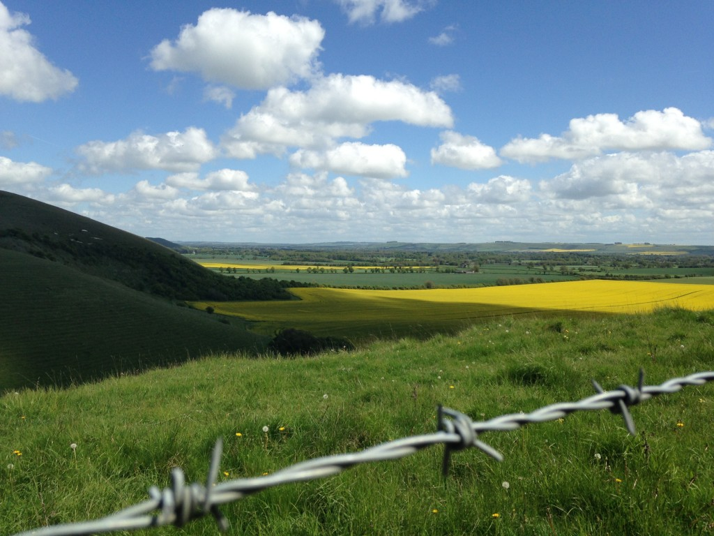 Beautiful views to tempt your eyes away from your front wheel mid-headwind